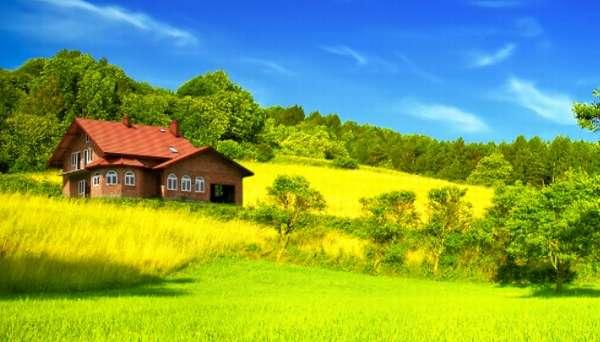 Цели определения стоимости земли