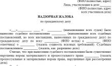 Жалоба в Европейский суд по правам человека (ЕСПЧ)
