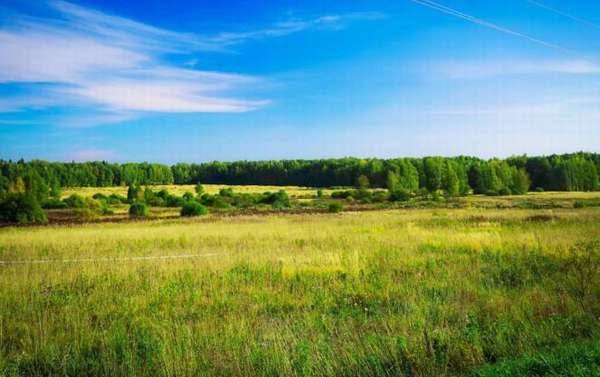 Чем земля ИЖС отличается от ЛПХ