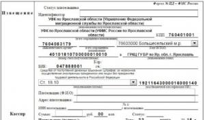 Образец квитанции на уплату штрафа