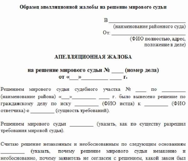 апелляция на решение суда по разводу