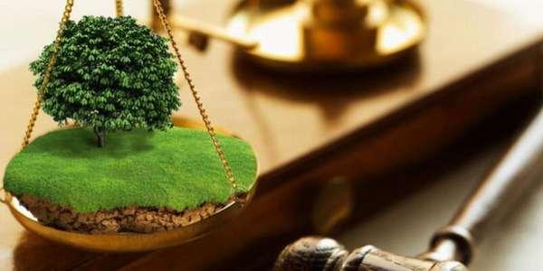 оспаривание стоимости земли в судебном порядке