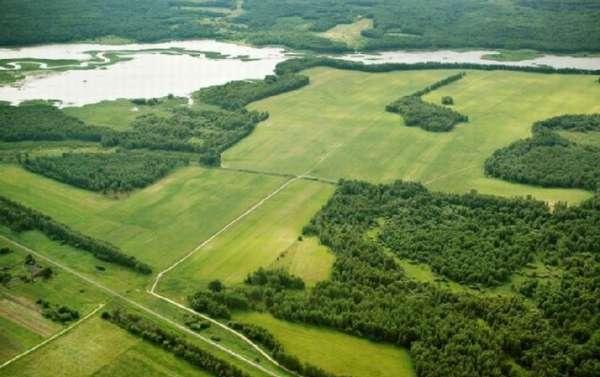 Удельный показатель кадастровой стоимости земельного участка