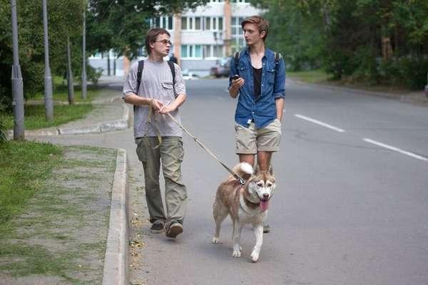 Штраф за выгул собак в неположенном месте и без намордника