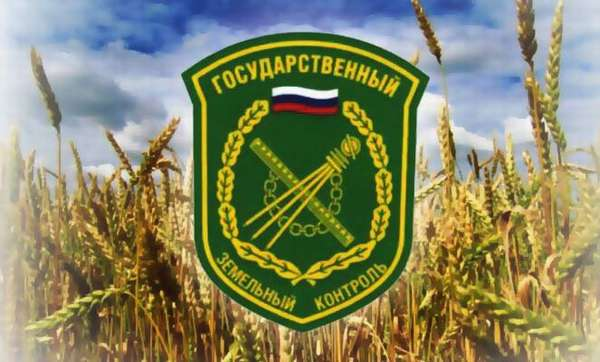 Государственный земельный контроль